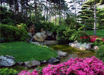 De-typisch-Japanse-tuin-buitengevoel.com_-1024x768-min